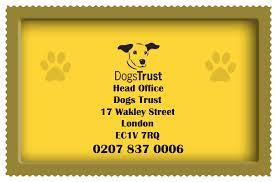 Supporting Dogs Trust Dial A Dog Wash West Reading